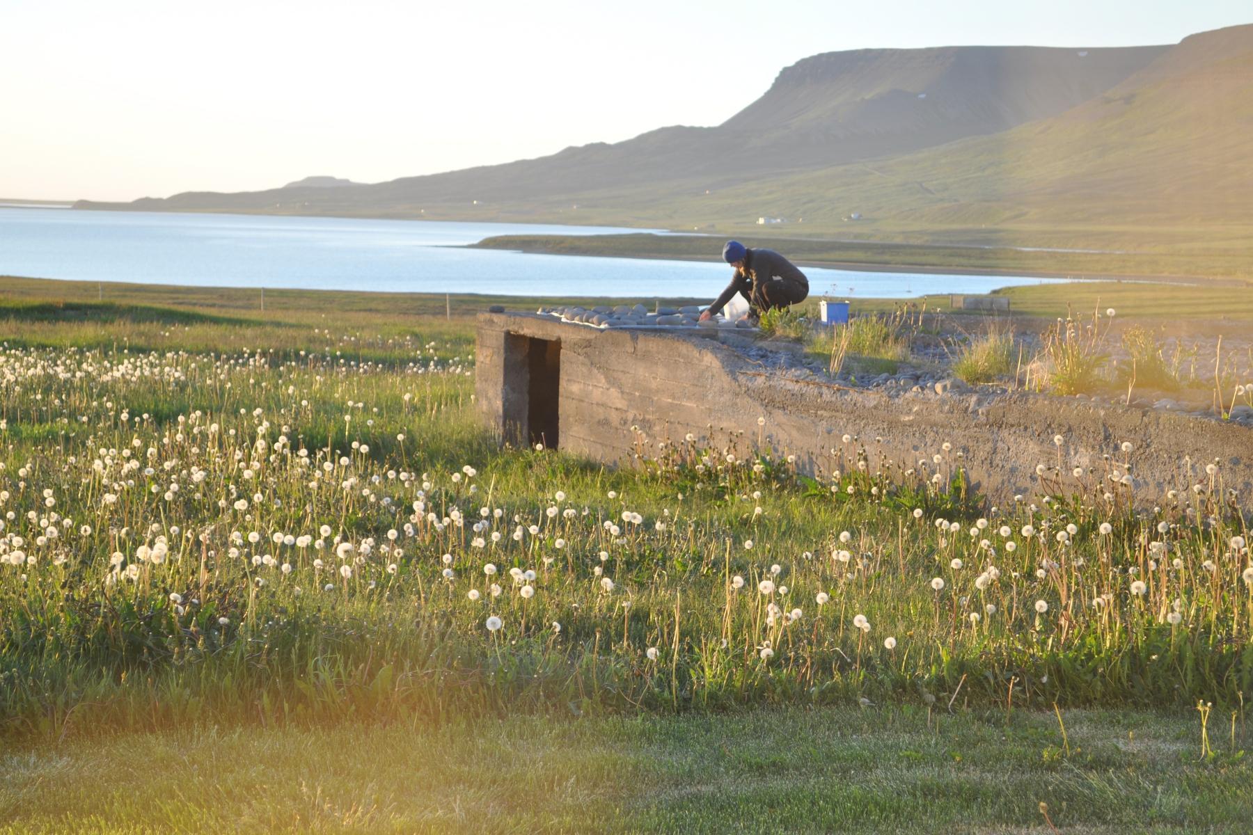 LOchowycz Iceland Outside Studio